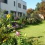 Garten mit Planzen hinter Häuser