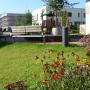 Hinterhofgarten mit anderem Blickwinkel