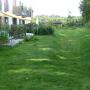Hinterhof Garten und Terassen