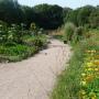 """Weg zu den Gärten für die """"Wohnen mit Wildrosen GbR"""""""