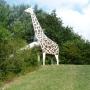 Die Giraffe von dem Spielraum Steilshooper Straße