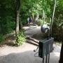 Schnappschuss von dem Dschungel-Balancierparcours mit Buschtelefon