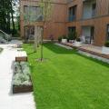 Hinterhof mit Garten Neue Hamburger Terrassen